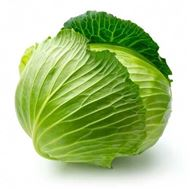 Picture of cabbage seed