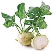 Picture of Kohlrabi seed