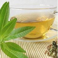 Picture of Lemon verbena tea